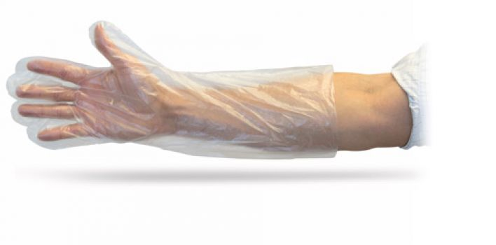 "18"" P.E. DISPOSABLE  GLOVE - 250 PER BOX - 10 BX/CS"